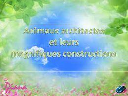 diaporama pps Animaux architectes et leurs constructions