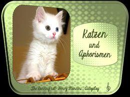 diaporama pps Aphorismen und Katzen 7