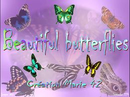 diaporama pps Beautiful butterflies