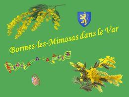 diaporama pps Bormes les mimosas