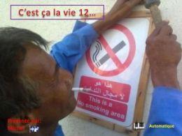 diaporama pps C'est ça la vie 12
