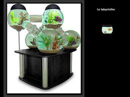 diaporama pps Des aquariums insolites