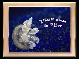 diaporama pps Visite sous la mer