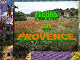 diaporama pps Fleurs de provence