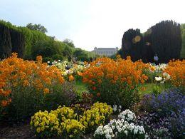 diaporama pps Jardin des plantes