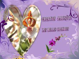 diaporama pps La beauté de l'orchidée