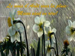 diaporama pps Le mois d'août sous la pluie