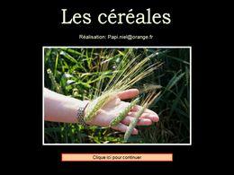 diaporama pps Les céréales
