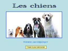 diaporama pps Les chiens