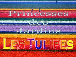 diaporama pps Princesses des jardins – Les tulipes