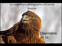diaporama pps Photographies de Laurent Boursier