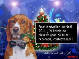 diaporama pps Mon réveillon de Noël