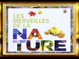 diaporama pps Nature magnifique