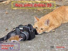 diaporama pps Nos amis drôles 19