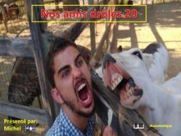 diaporama pps Nos amis drôles 20