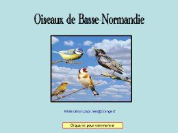 diaporama pps Oiseaux