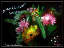 diaporama pps Pensées à propos des fleurs