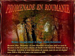 diaporama pps Promenade en Roumanie