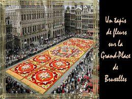diaporama pps Tapis fleuri sur la grand place de Bruxelles