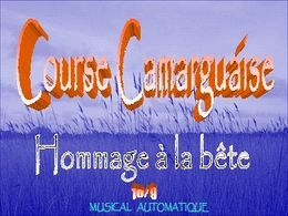 Barraie course camarguaise en pps