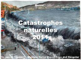 Catastrophes naturelles 2011 en diaporama