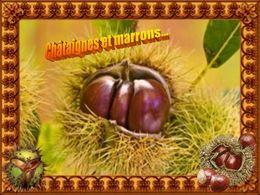 PPS poème Châtaignes et marrons