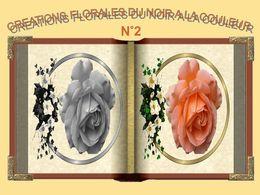 Créations florales du noir à la couleur N°2