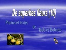 PPS De superbes fleurs 10