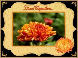 PPS poème L'éternel chrysanthème