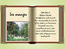Les lettres de mon moulin: Les oranges