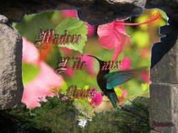 PPS sur Madère l'île aux fleurs