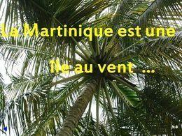 PPS voyage en Martinique N°4