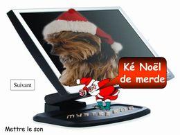 PPS Noël de merde