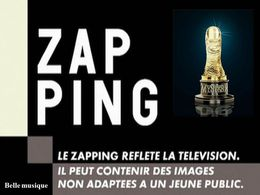 Zapping politique en diaporama