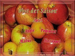 Diaporama Obst der saison Apfel