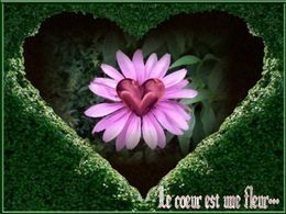 Pps poème: le cœur est une fleur