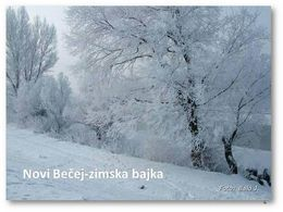 Novi Bečej Zimska bajka