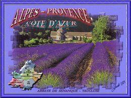 Alpes Provence Cote d'Azur