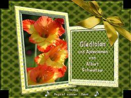 PPS Aphorismen und Gladiolen