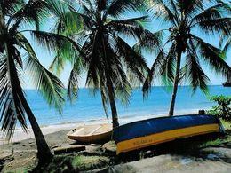 Au cœur des Antilles: La Martinique