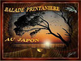 Balade printanière au Japon