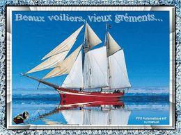 Beaux voiliers vieux gréements