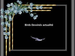 Diaporama Birds dessinés actualité