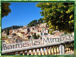 Bormes les mimosas