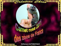 Carnet rose 2011 des zoos