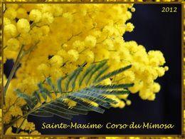 Corso du mimosa à Sainte-Maxime 2012