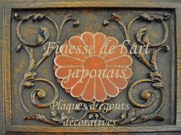 Finesse de l'art japonais: Plaques d'égouts décoratives