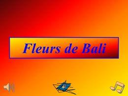 Fleurs de Bali