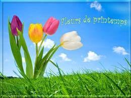 PPS Fleurs de printemps