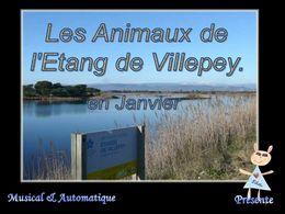 Fréjus étang de Villepey